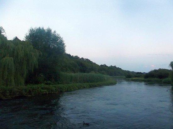 The Mayfly Riverside Pub: river by pub