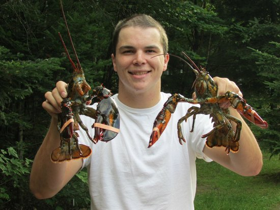 Balsam Woods Campground: Lobster Time
