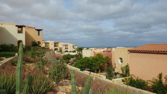Royal Decameron Boa Vista: jardin