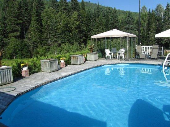 piscine que du bonheur picture of gite de la maison
