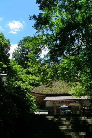 Daikozenji Temple: 緑鮮やかな夏の本堂