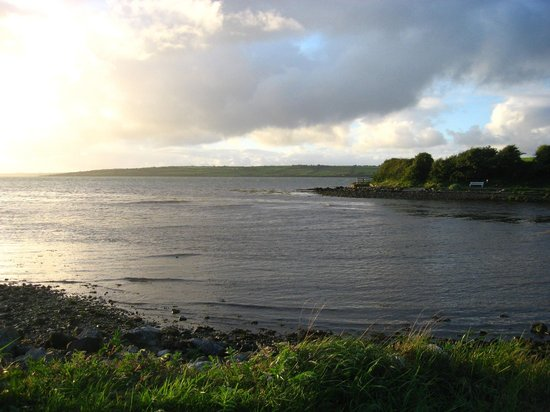 O'Driscoll's Bed & Breakfast: View of Shannon Estuary from Glin park.