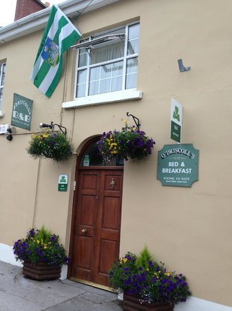 O'Driscoll's Bed & Breakfast: Welcome to O'Driscoll's B&B - Up Limerick !