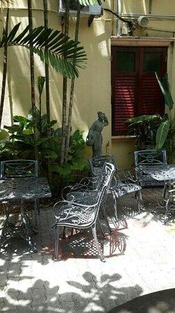 Hotel Puri: hotel courtyard