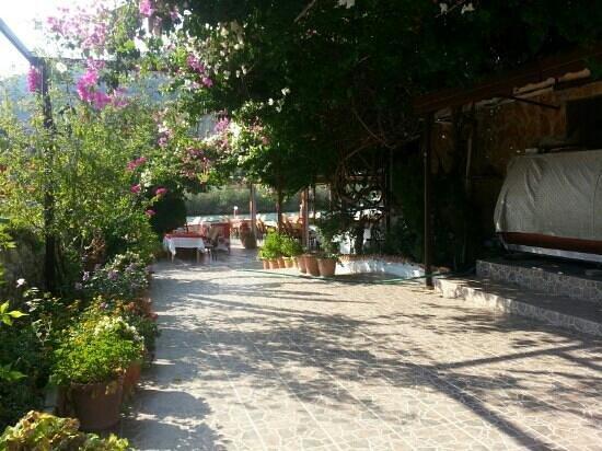 Sahil Restaurant: its sahil