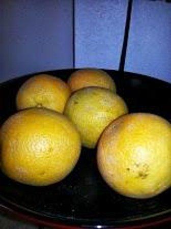 Days Inn Effingham : Moldy oranges