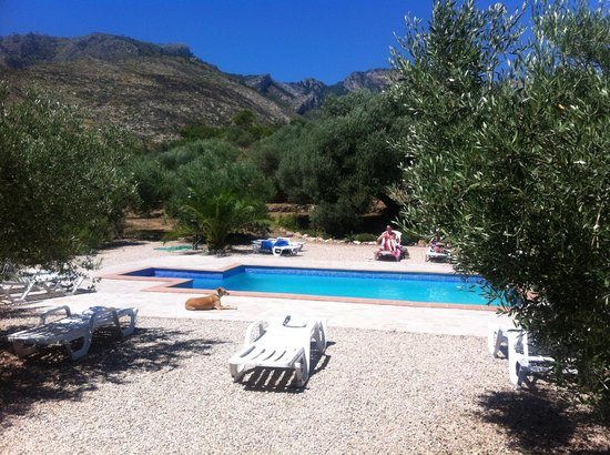 Yoga Holidays Spain - Casa de Carrasco: Piscina