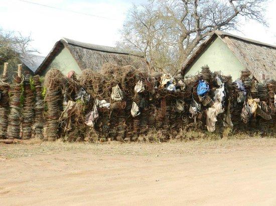Hlane Royal National Park: Poachers wall of shame!
