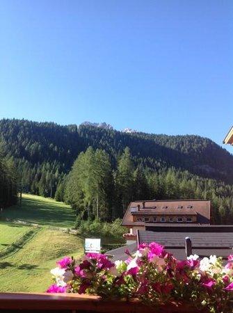 Sport & Kurhotel Bad Moos : vista dalla nostra camera...