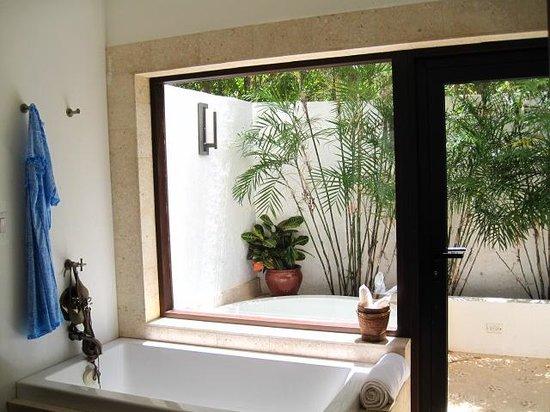 outdoor jacuzzi & shower (amazing)