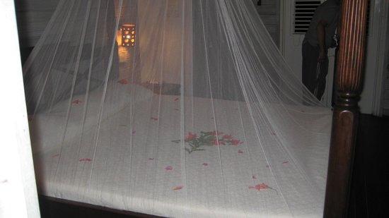 Sea-U Guest House: romantic