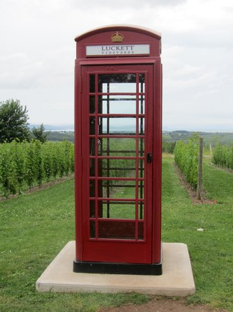 Grape Escapes Nova Scotia Wine Tours: working phone booth in middle of vineyard