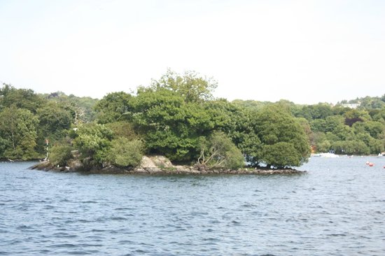 Bowness-on-Windermere, UK: clump on the Windermere