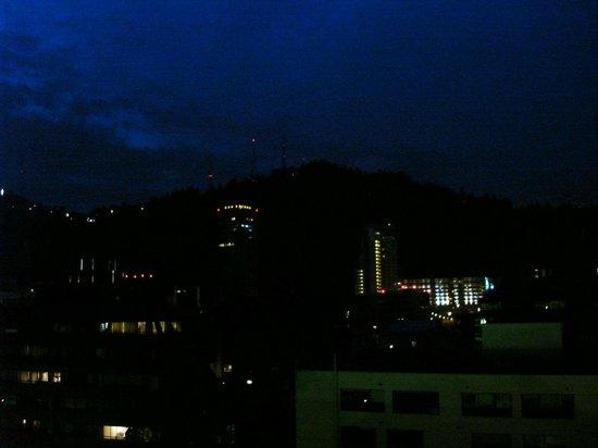 Austral Suites: vista desde el balcon de noche