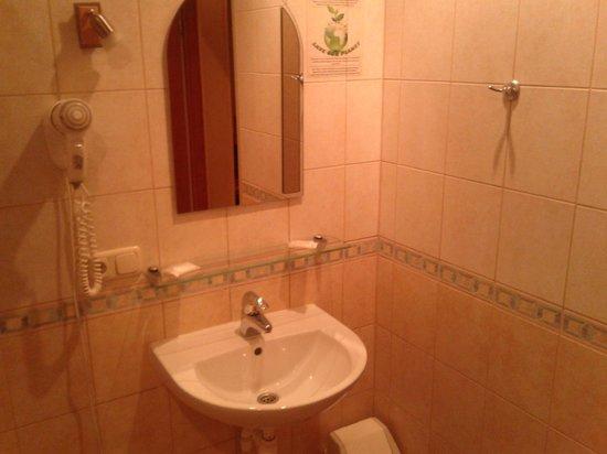 Baltpark Hotel: Фен, шампунь, мыло, 2 полотенца включены