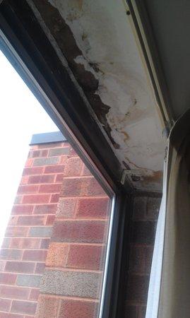 The Saratoga Hilton: Mold and water damage around the window