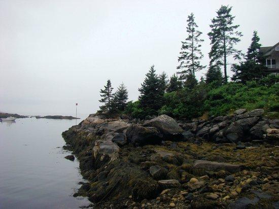 Newagen Seaside Inn: View from dock area
