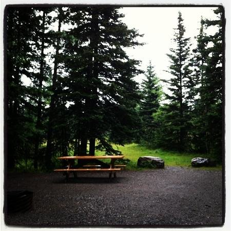 Mount Kidd RV Park: our spacious campsite. E29 Loved it!