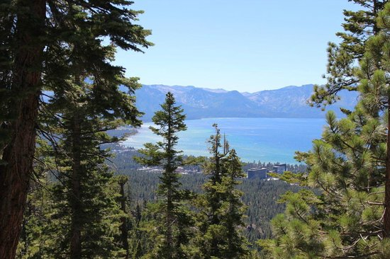 Tahoe Meadows Whole Access Interpretive Trail: Kingsbury South - behind the casinos