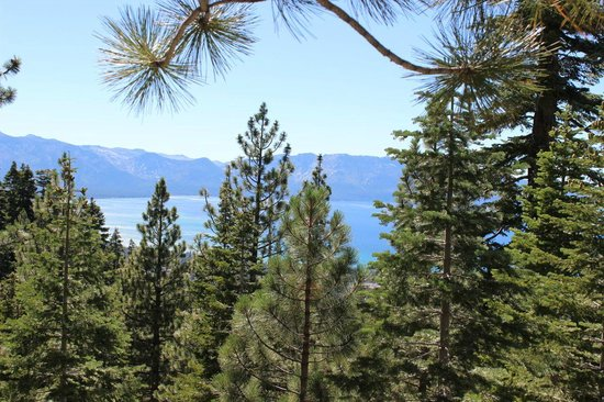 Tahoe Meadows Whole Access Interpretive Trail: Kingsbury South 2