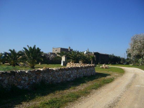 Masseria-Selvaggi