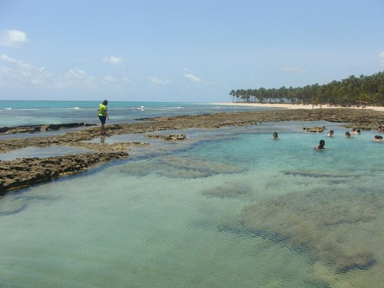 Carneiros Beach: Piscinas Naturais