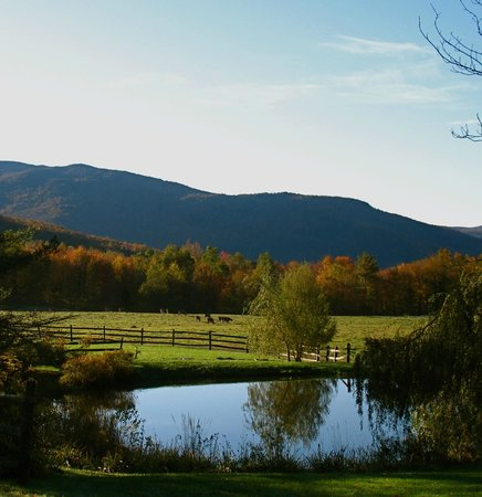 Windekind Farm: Windekind's view down the spine of the Green Mountains