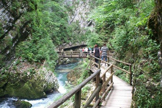 Ahotel Hotel Ljubljana: Also visit Vintar gorge near Bled