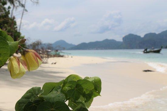 Ao Nang, Thailand: *