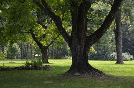 Woolverton Inn: grounds
