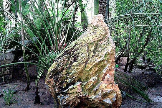 Palmiarnia Poznanska (Palmenhaus Poznan): Ciekawe kamienie