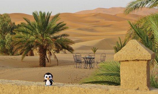 Hotel Ksar Merzouga: les dunes
