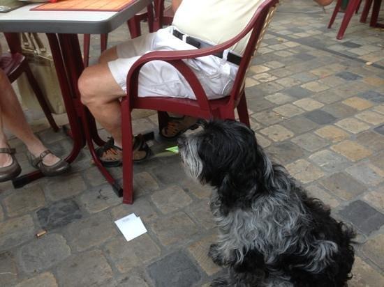 Cafe du Fleuve : millage porte l'addition