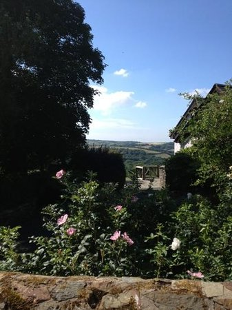 Country Ways Holiday Cottages: The view from our patio.