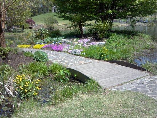 Meadowlark Botanical Garden: path
