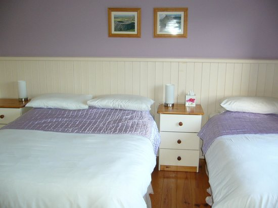 Ard Na Coille Bed and Breakfast: chambre mauve n°2