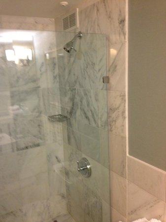 Hilton Dallas Lincoln Centre: Walk-In Shower. Huge!