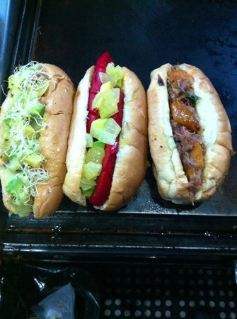 Galgo hot dogs gourmet
