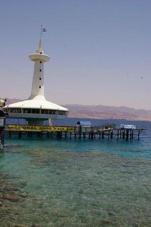 Underwater Observatory Marine Park : L'observatoire / The observatory