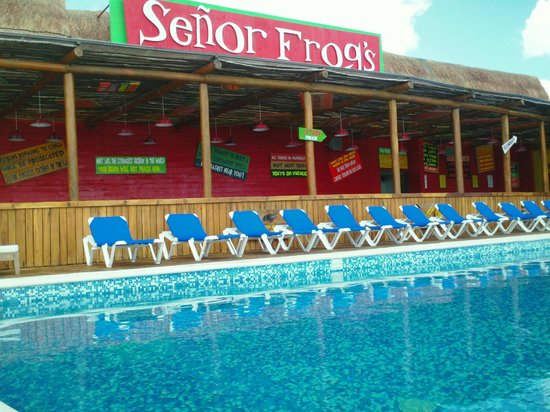 Hotel Costa Maya Inn: CLUB DE PLAYA SR FROGS BEACH CLUB BY COSTA MAYA