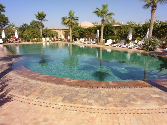Hotel Dar Zitoune: Gorgeous pool to swim in