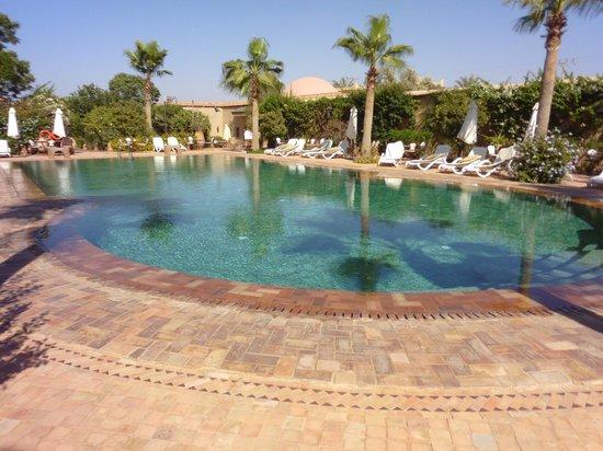 Hotel Dar Zitoune : Gorgeous pool to swim in