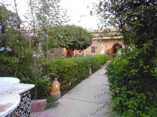 Hotel Dar Zitoune : Beautiful Grounds