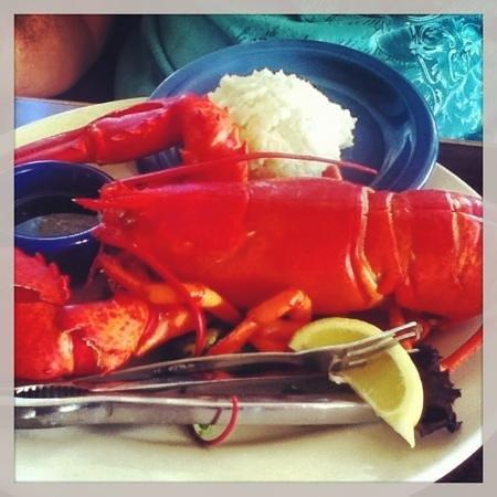 Juno Beach Fish House: it's lobster time!
