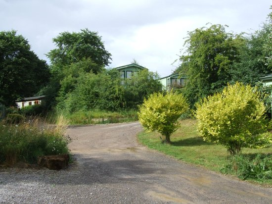 Lindale Holiday Park: around the site