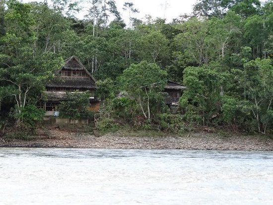 Ecuador Chocolate Lodge : View from across the river Napo.