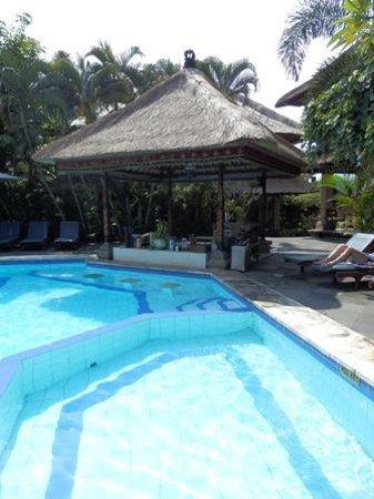 โรงแรมบาหลี อากุง วิลเลจ: pool
