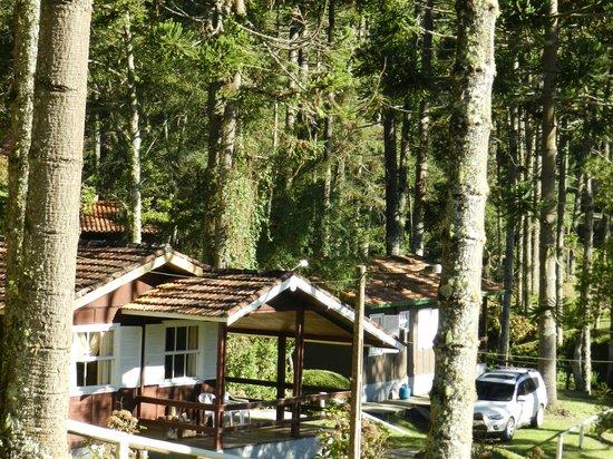 Hotel Fazenda Floresta Negra: Vista