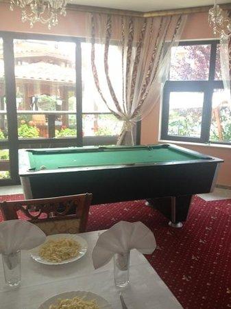 Elegant Lux Hotel : Billiards