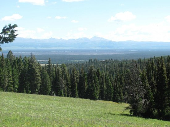 The Diamond P Ranch: View we had during one of the breaks on the ride